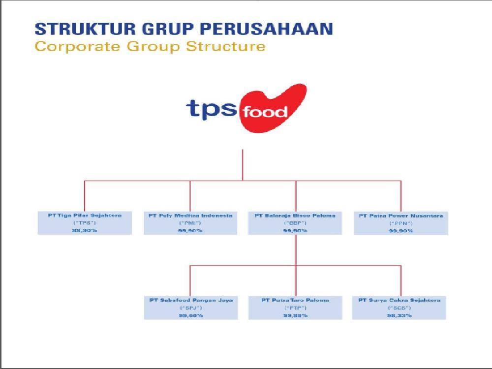 Struktur-Grup-Perusahaan-tiga-pilar